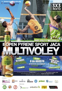 multivoley2015JACA